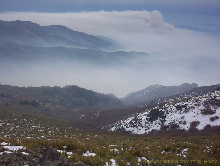 View of a valley covered with smoke, from Peine, Lircay, Vilches, Chile.