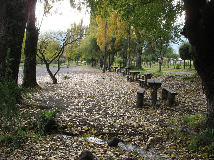 Image of wooden benches on shore of  Calafquen lake.