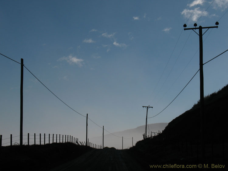 An image of poles and fences on the Pacific coast near Duao.